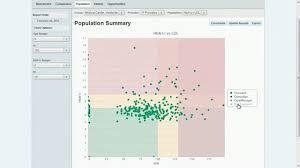 population summary